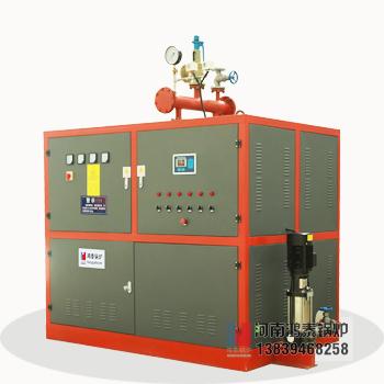 WDRF非报检电蒸汽发生器