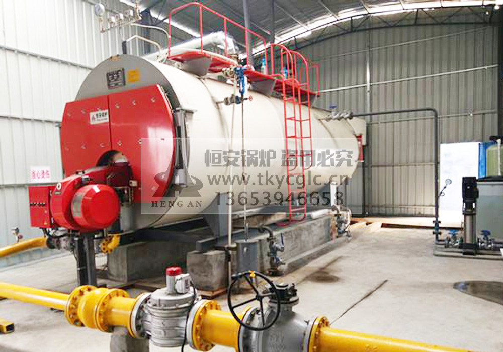 Low nitrogen gas steam boiler installation and use